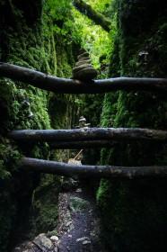 Le canyon des gueulards